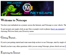 Welcome To Netscape